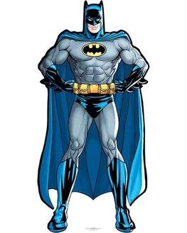Image carton décoratif Batman