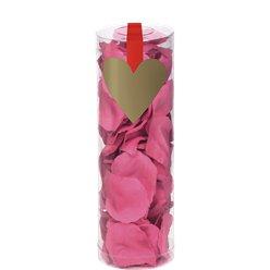 Pétales roses