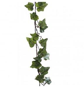 Guirlande feuilles de Lierre 180 cm